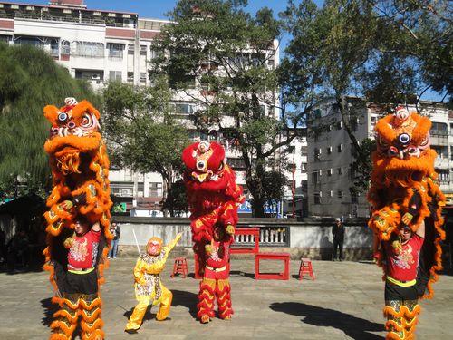 105年02月 林園新春活動 舞獅